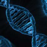 Scoperto nuovo gene per sclerosi multipla e Lupus