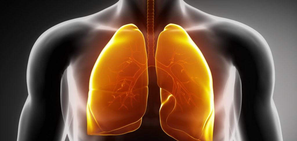 Tumore del polmone: i due volti di hMENA