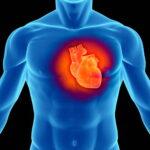 Covid-19 e Cuore un portale per supportare gli specialisti nella cura dei cardiopatici affetti da Covid-19