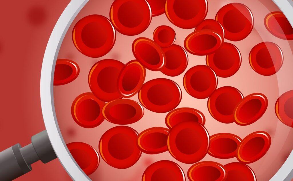 Kite, società del gruppo Gilead, presenterà i risultati della ricerca sulle terapie cellulari al 46° meeting annuale (virtuale) della European Society for Blood and Marrow Transplantation (EBMT)